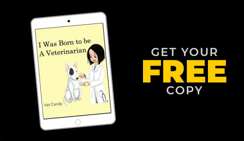 "Vet Candy launches ""I was born to be a veterinarian"" on National Read a Book Day"